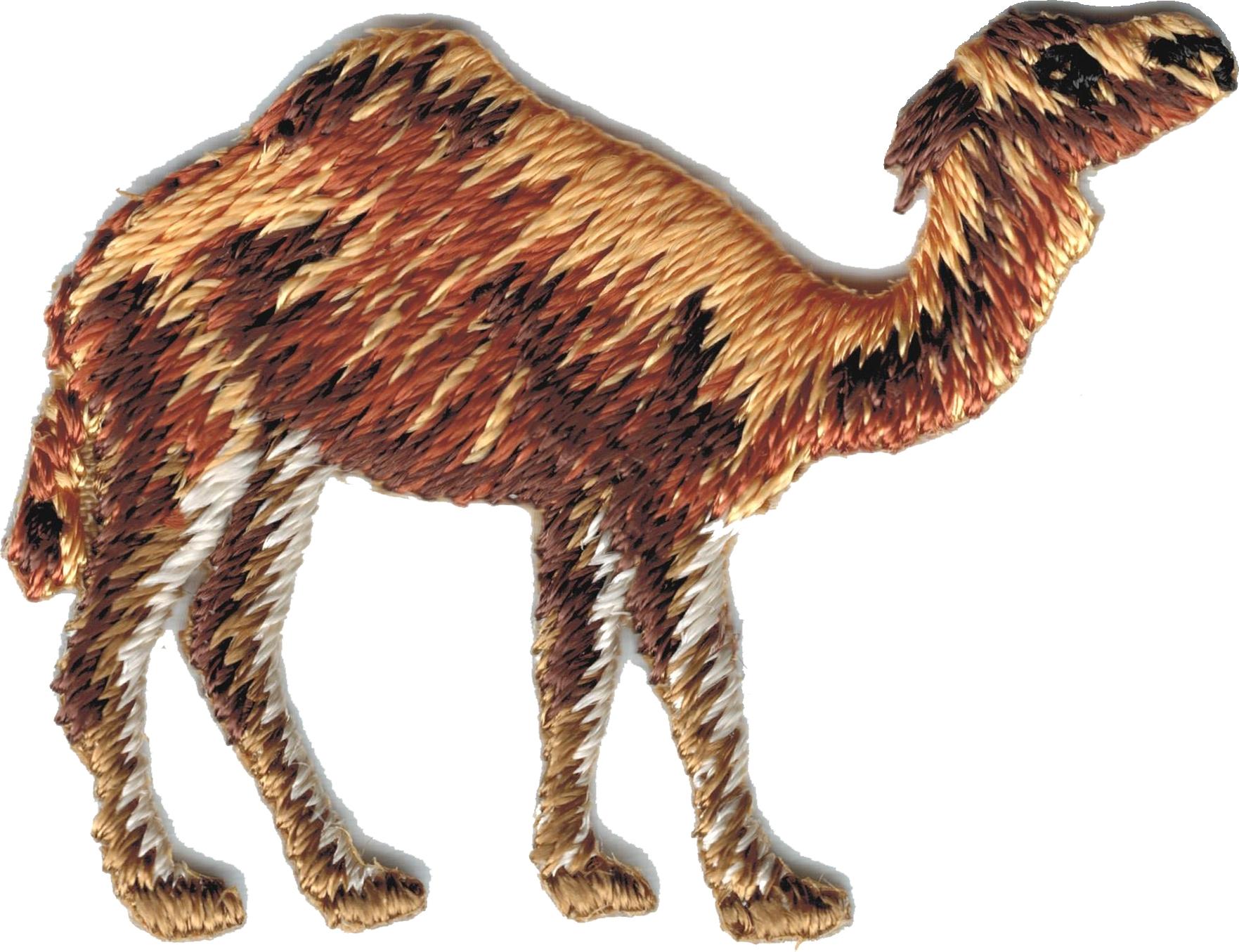 Shriner Desert Camel Clyde Iron-On Patch