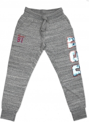 View Buying Options For The Big Boy Delaware State Hornets Ladies Jogger Sweatpants
