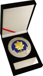View Buying Options For The US Air Force Major 0-4 Medallion In Gift Box