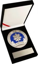 View Buying Options For The US Air Force Lt. Colonel 0-5 Medallion In Gift Box
