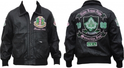 View Buying Options For The Alpha Kappa Alpha Divine 9 S2 Ladies Bomber Jacket