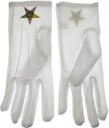 View Buying Options For The Eastern Star Emblem Ritual Gloves