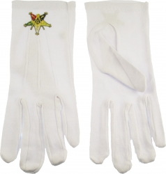 View Buying Options For The Eastern Star Past Patron Emblem Ritual Gloves