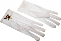 View Buying Options For The Eastern Star Past Matron Emblem Ritual Gloves