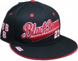 View Buying Options For The Birmingham Black Barons Legacy S3 Mens Cap