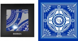View Buying Options For The Zeta Phi Beta Divine 9 Silk Scarf