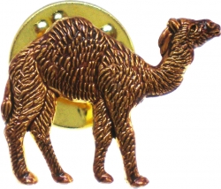 View Buying Options For The Shriner Desert Camel Clyde Lapel Pin