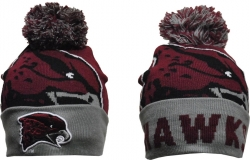 View Buying Options For The Maryland Eastern Shore Hawks S8 Beanie