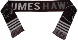 View Buying Options For The Maryland Eastern Shore Hawks S2 Scarf