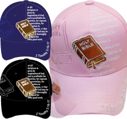 View Buying Options For The Holy Bible 2 Timothy 3:16-17 Shadow Mens Cap
