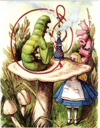 View Buying Options For The Alice In Wonderland The Caterpillar Vintage Print Color Sticker